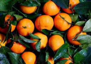 mandarinen-bild-shop